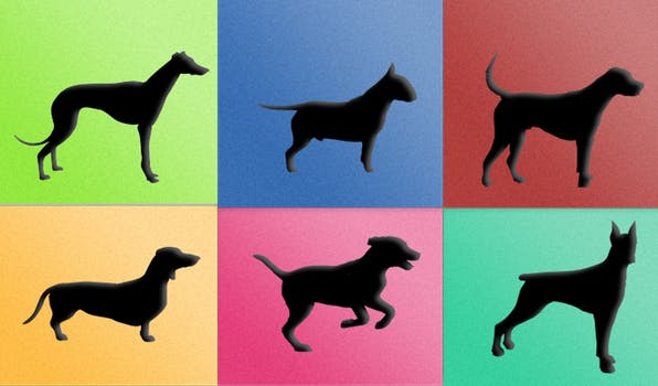 Identify the Dog Breed by its Silhouette!