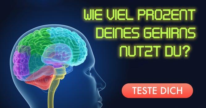 Wie Viel Prozent Unseres Gehirns Nutzen Wir