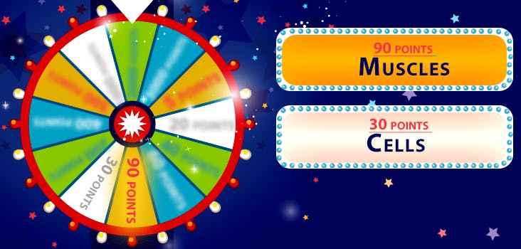 Q 6. Tricky, tricky. The wheel is trying to spin you out. What are these clues referring to?