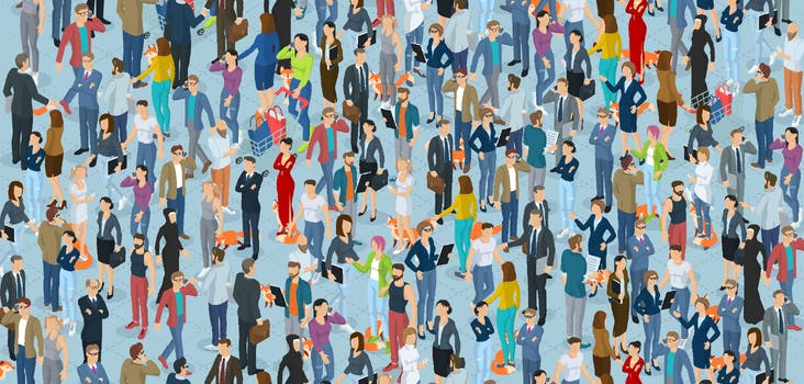 Q 15. How many foxes are hidden in this crowd? Type your answer in below!